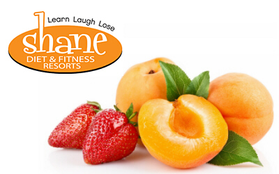 Shane Diet & Fitness Resorts