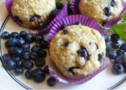 Gluten Free Quinoa Blueberry Muffins