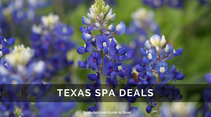 Texas spa packages deals offers and getaways to spas for Weekend girl getaways spa packages