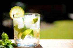 Ginger Lemon Lime Fizz Mocktail