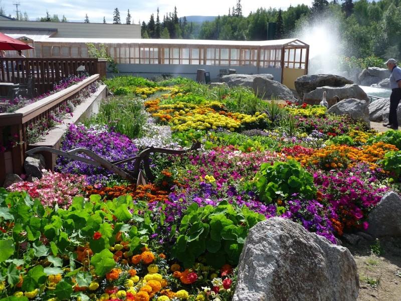 Chena Hot Springs Resort Fairbanks