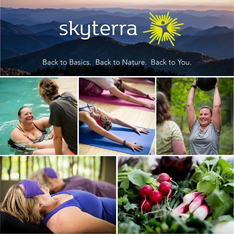 Skyterra Wellness Resort All Inclusive Weight Loss Retreats