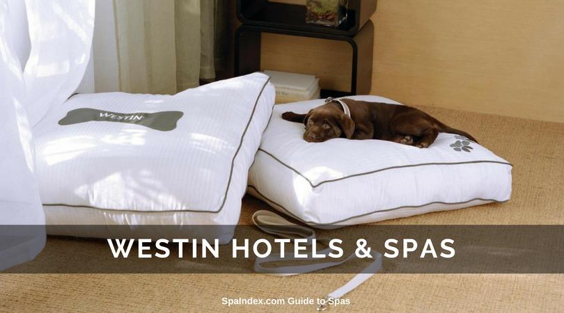 Best Pet Friendly Hotels Spas Resorts And Retreats